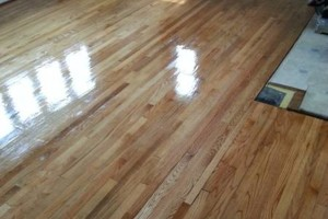 Photo #13: HARDWOOD FLOOR REFINISHING (+ SAND and REPAIR)