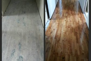 Photo #10: HARDWOOD FLOOR REFINISHING (+ SAND and REPAIR)