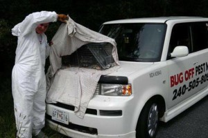 Photo #1: EXTERMINATOR FULLY LICENSED & INSURED