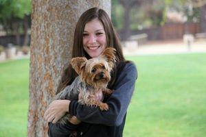 Photo #1: Bay Area Dog Training