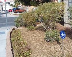Photo #1: LANDSCAPING, CLEAN UP. Free estimates!