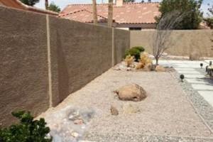 Photo #15: Stucco Block Walls, Drywall, Water Damage...