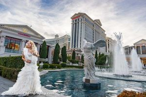 Photo #10: $399 only complete package- Professional Wedding Photography
