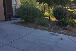Photo #6: ROGER GREEN LANDSCAPING