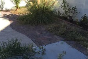 Photo #2: ROGER GREEN LANDSCAPING
