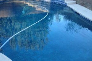 Photo #3: Silverstate Pool Services is now offering first month of service free!