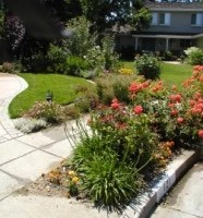 Photo #1: Cyprex Construction Landscapes - Landscape design  / construction
