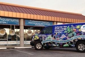 Photo #1: Creative Aquariums Of Tampa