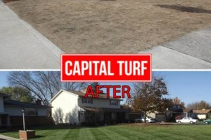 Photo #5: Highest Quality Lawn Care in Columbus! Professionally Striped Lawns.