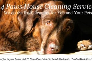 Photo #1: 4 Paws House Cleaning