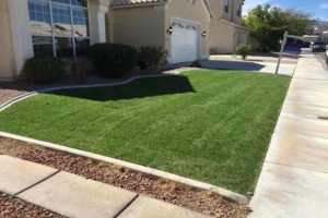 Photo #3: YARD CLEAN UPS FROM $40