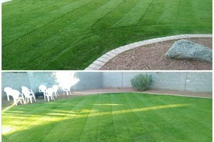 Photo #2: ESL Landscape Maintenance. Basic lawn care starting at $35