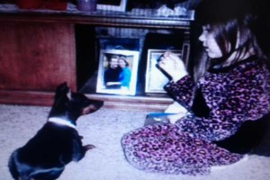 Photo #18: IN HOME DOG TRAINING