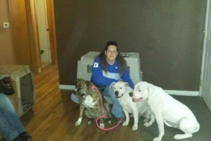 Photo #16: IN HOME DOG TRAINING