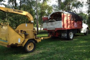 Photo #2: NEIGHBORLY TREE SERVICE & FIREWOOD