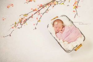 Photo #7: Newborn Photography - $150