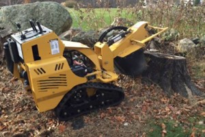 Photo #1: Powers Outdoor Services. Stump Grinding