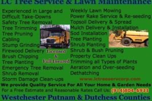 Photo #1: LC Tree Service Corp. TREE & LANDSCAPING SERVICE