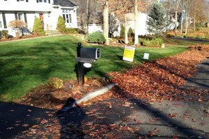 Photo #14: Still offering fall cleanup and other landscape services
