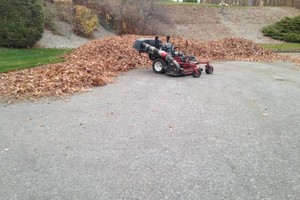 Photo #13: Still offering fall cleanup and other landscape services