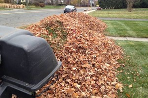 Photo #12: Still offering fall cleanup and other landscape services