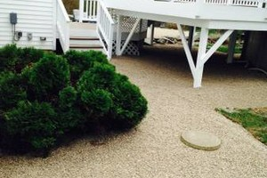 Photo #9: Still offering fall cleanup and other landscape services