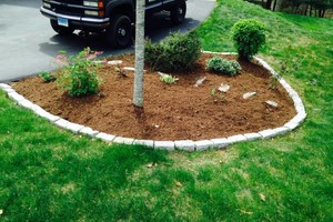 Photo #8: Still offering fall cleanup and other landscape services