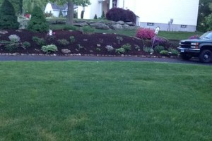 Photo #7: Still offering fall cleanup and other landscape services