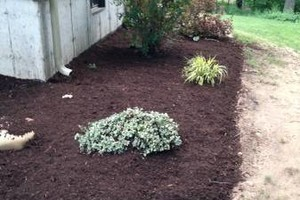 Photo #6: Still offering fall cleanup and other landscape services