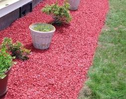 Photo #1: Still offering fall cleanup and other landscape services