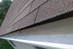 Photo #12: GUTTER CLEANING AND YARD CLEAN UP!