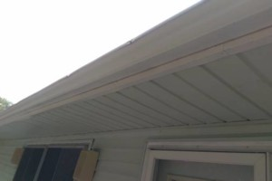 Photo #8: GUTTER CLEANING AND YARD CLEAN UP!