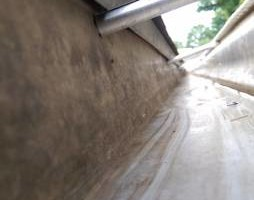 Photo #6: GUTTER CLEANING AND YARD CLEAN UP!