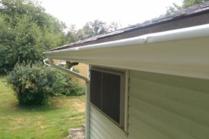 Photo #5: GUTTER CLEANING AND YARD CLEAN UP!