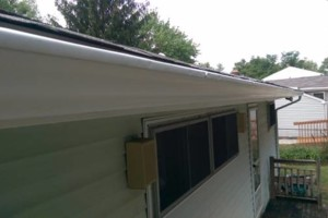 Photo #4: GUTTER CLEANING AND YARD CLEAN UP!