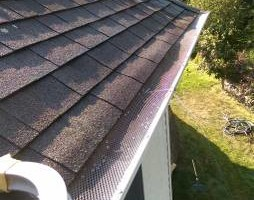 Photo #3: GUTTER CLEANING AND YARD CLEAN UP!