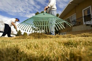 Photo #1: LAWN CARE/ PROPERTY SERVICE FOR SPRING