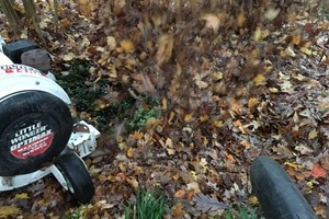 Photo #17: Leaf removal, landscaping service and more