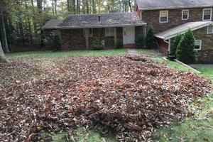 Photo #16: Leaf removal, landscaping service and more