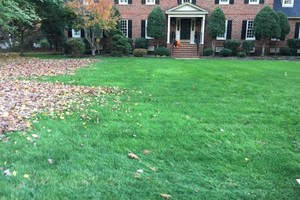 Photo #15: Leaf removal, landscaping service and more