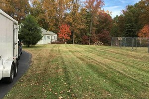 Photo #4: Leaf removal, landscaping service and more