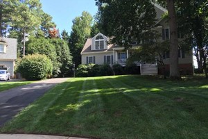 Photo #3: Leaf removal, landscaping service and more