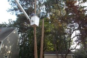 Photo #5: CERTIFIED EXPERT TREE SERVICE, 65 FT BUCKET TRUCK & CLIMBING SERVICE