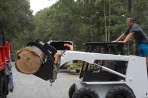 Photo #2: CERTIFIED EXPERT TREE SERVICE, 65 FT BUCKET TRUCK & CLIMBING SERVICE