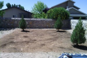 Photo #16: LANDSCAPING And Tree removal