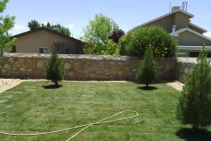 Photo #17: LANDSCAPING And Tree removal