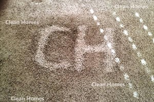 Photo #1: CARPET & UPHOLSTERY DEEP CLEANING. VALUE OF 2...