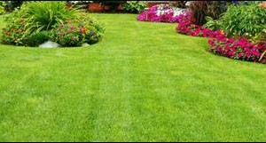 Photo #5: FREE LAWN CARE QUOTE FOR 2016!... Yard Butler
