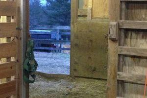 Photo #3: Horse boarding. Please call Mark!