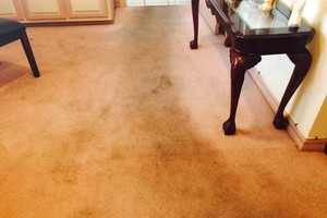 Photo #9: Professional Carpet/Upholstery cleaning 3 rooms 60dlls